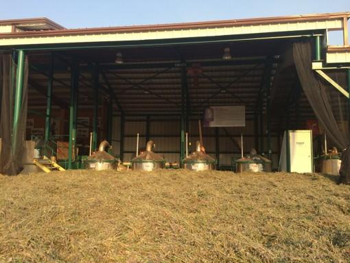 Destillationsanlage Balsamtanne