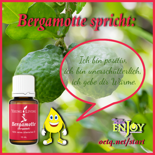 Team Enjoy Bergamot G