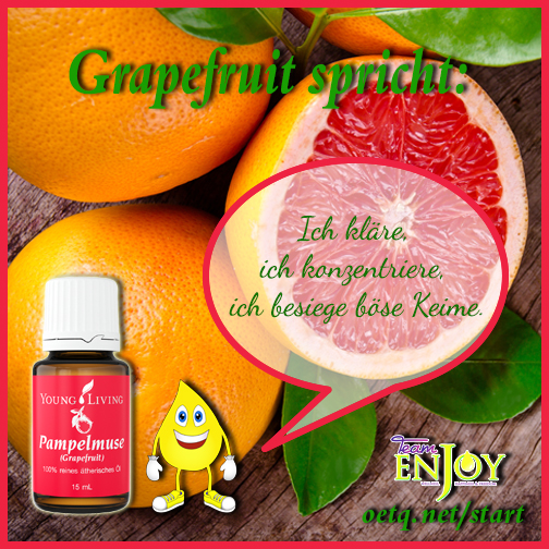 Team Enjoy Grapefruit G