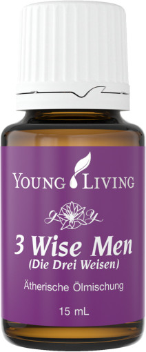 3 Wise Men1